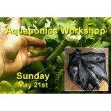 Introduction to Aquaponics - 1 Day Workshop - Perth - May 21st, 2017 - SOLD OUT!