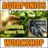 Introduction to Aquaponics - 1 Day Workshop - Perth - August 15th, 2020 - SOLD OUT!