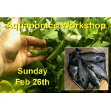 Introduction to Aquaponics - 1 Day Workshop - Perth - Feb 26th, 2017 - SOLD OUT!