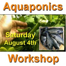Introduction to Aquaponics - 1 Day Workshop - Perth - August 4th, 2018