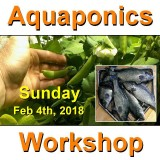 Introduction to Aquaponics - 1 Day Workshop - Perth - Feb 4th, 2018