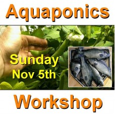 Introduction to Aquaponics - 1 Day Workshop - Perth - Nov 5th, 2017 - SOLD OUT!