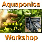 Introduction to Aquaponics - 1 Day Workshop - Perth - June 27th, 2020