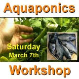 Introduction to Aquaponics - 1 Day Workshop - Perth - March 7th, 2020